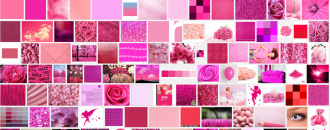Ephémère, la couleur rose filtrée par le moteur de recherche Google