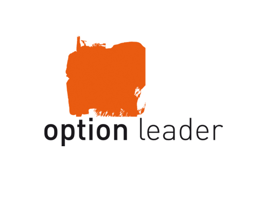 OPTION LEADER
